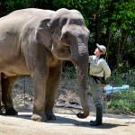 姫路動物園 入園料無料!2015年2月22日のイベント情報