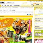 姫路市 求人アルバイト・バイト「姫路セントラルパーク!」